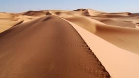 Обои Пустыня: Пустыня, Песок, Следы, Прочие пейзажи