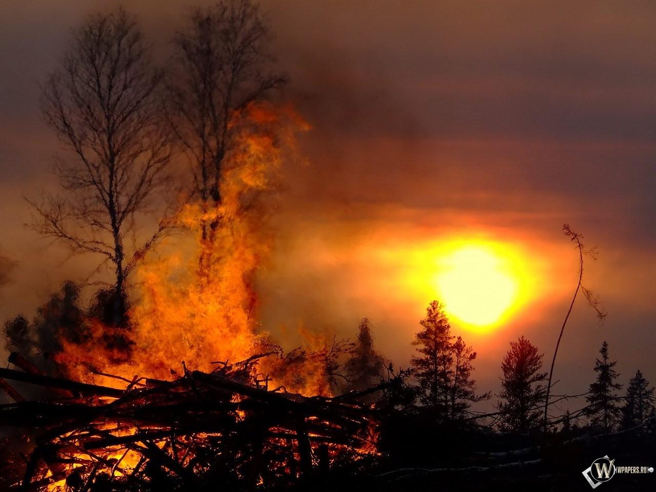 так картинки пожара от солнца дома