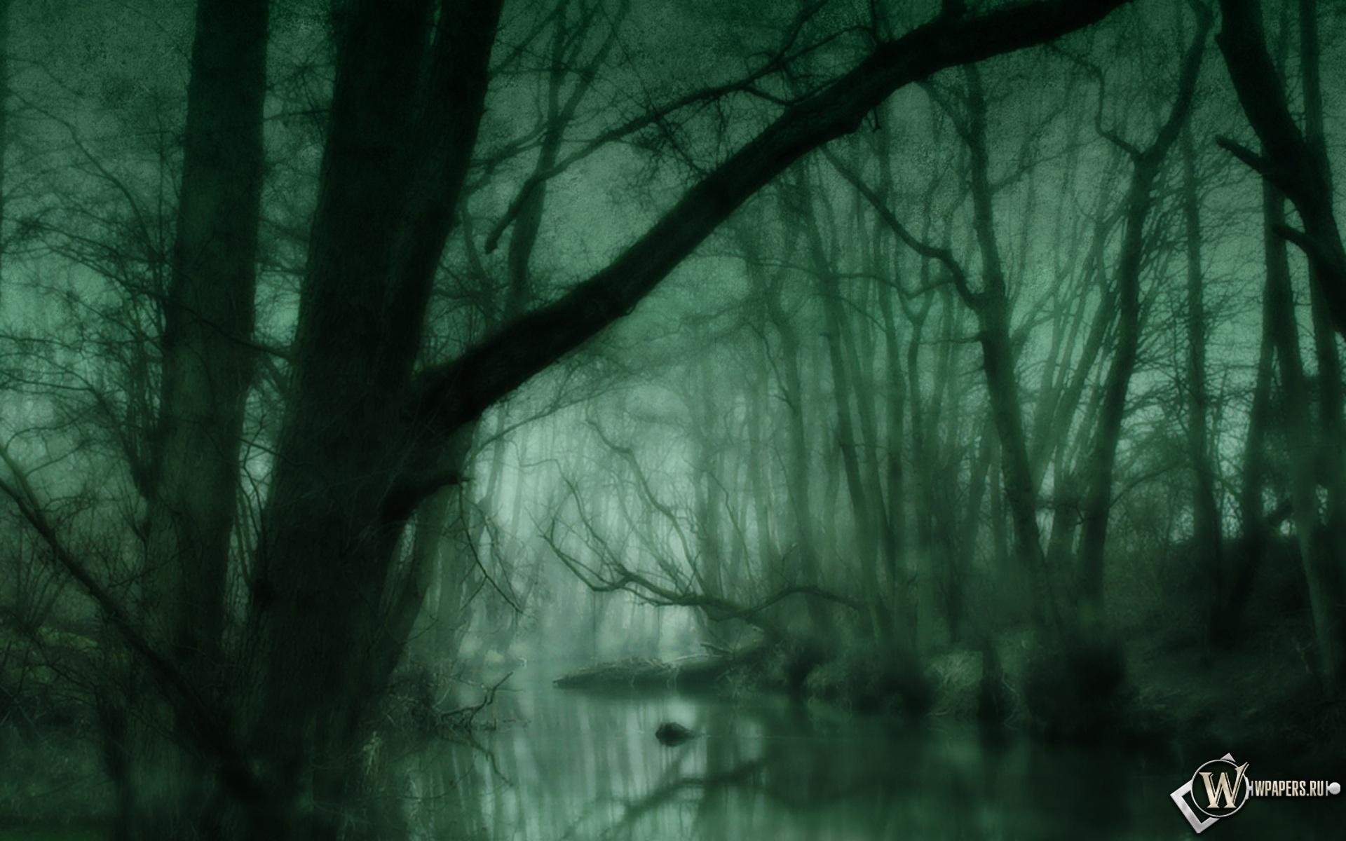 Зеленое болото 1920x1200
