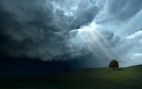 Обои Свет на дерево: Тучи, Лучи солнца, Дерево, Прочие пейзажи