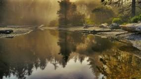 Обои Лесная речка: Река, Лес, Природа, Лучи солнца, Прочие пейзажи