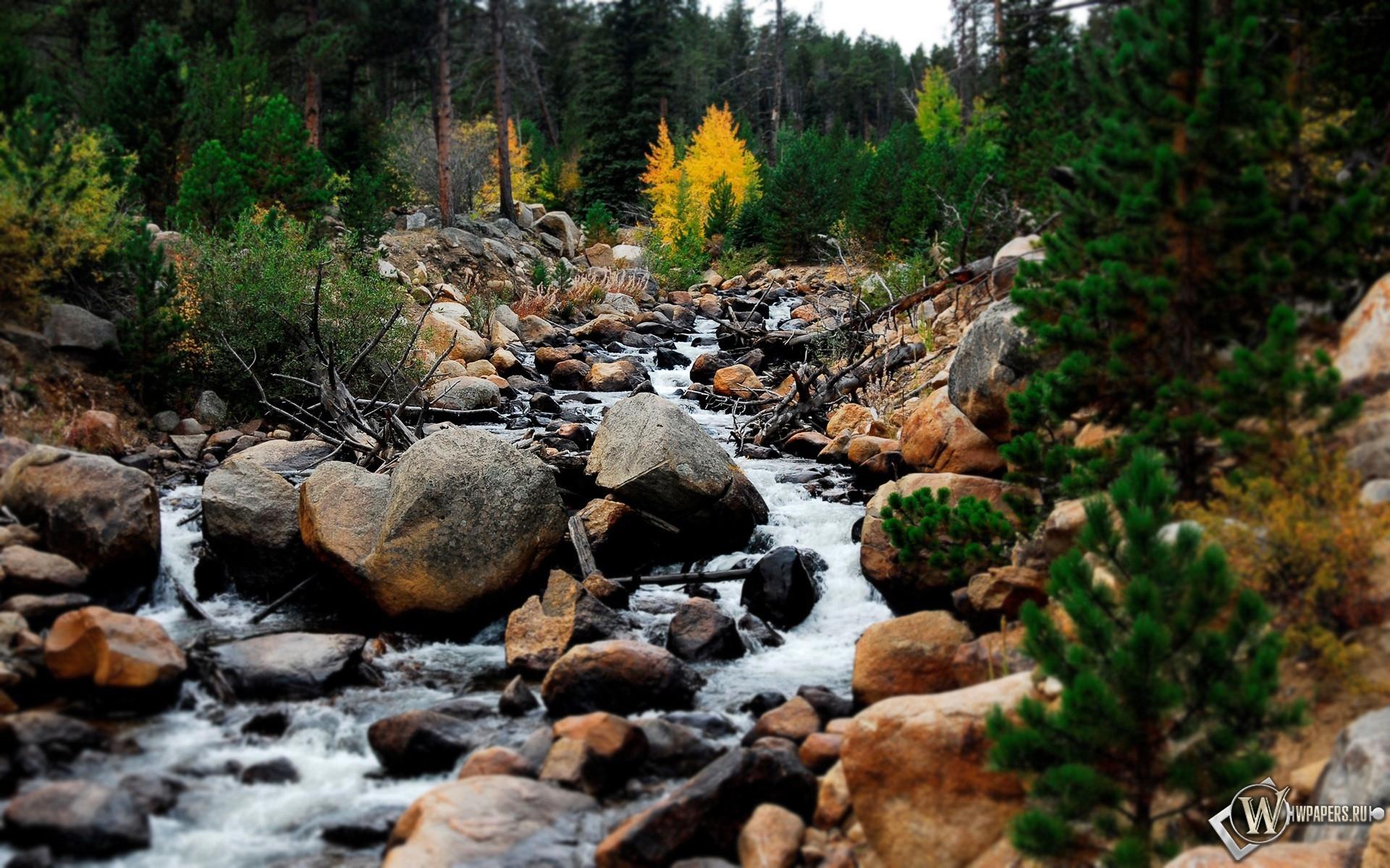 Горный ручей Rocky Mountains 1920x1200