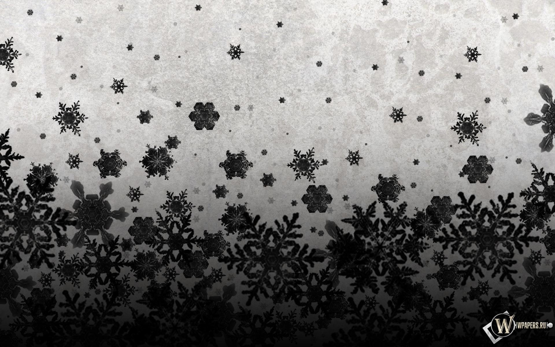 Чёрные снежинки 1920x1200