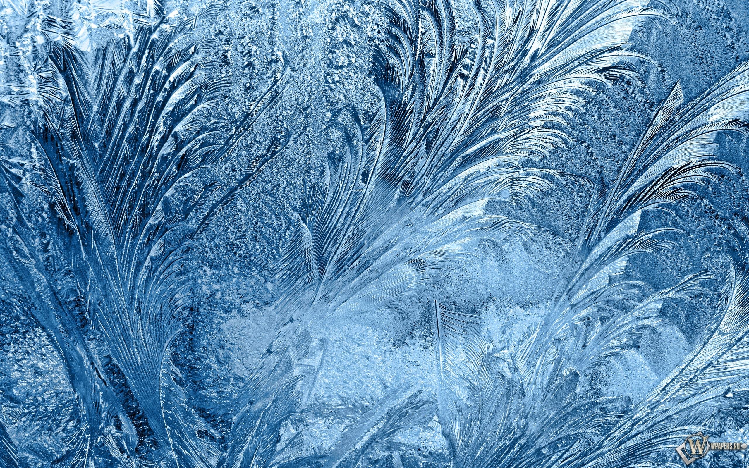 Морозные узоры на стекле 2560x1600