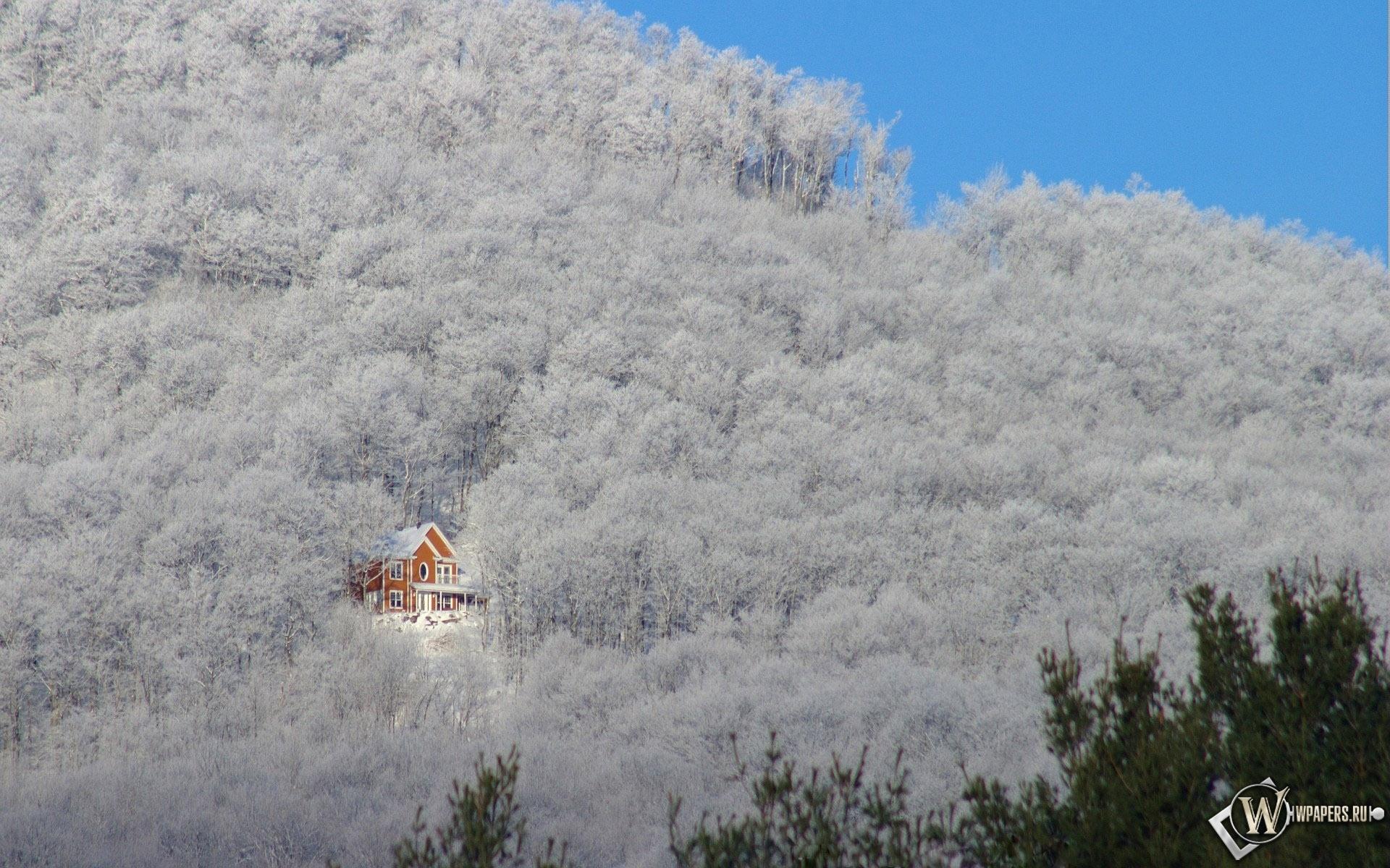 Зимний домик в лесу 1920x1200