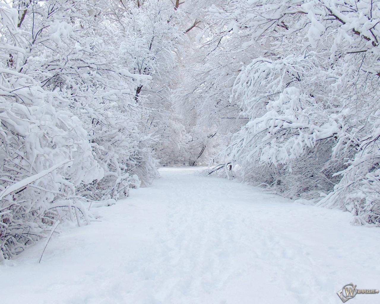 Зима 1280x1024