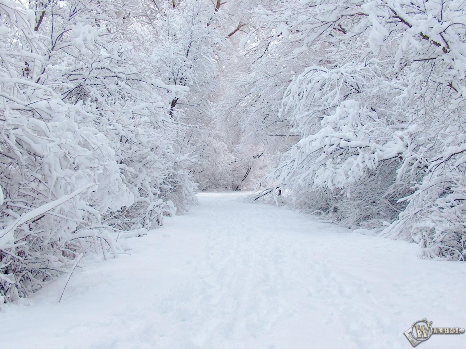 Зима 1600x1200