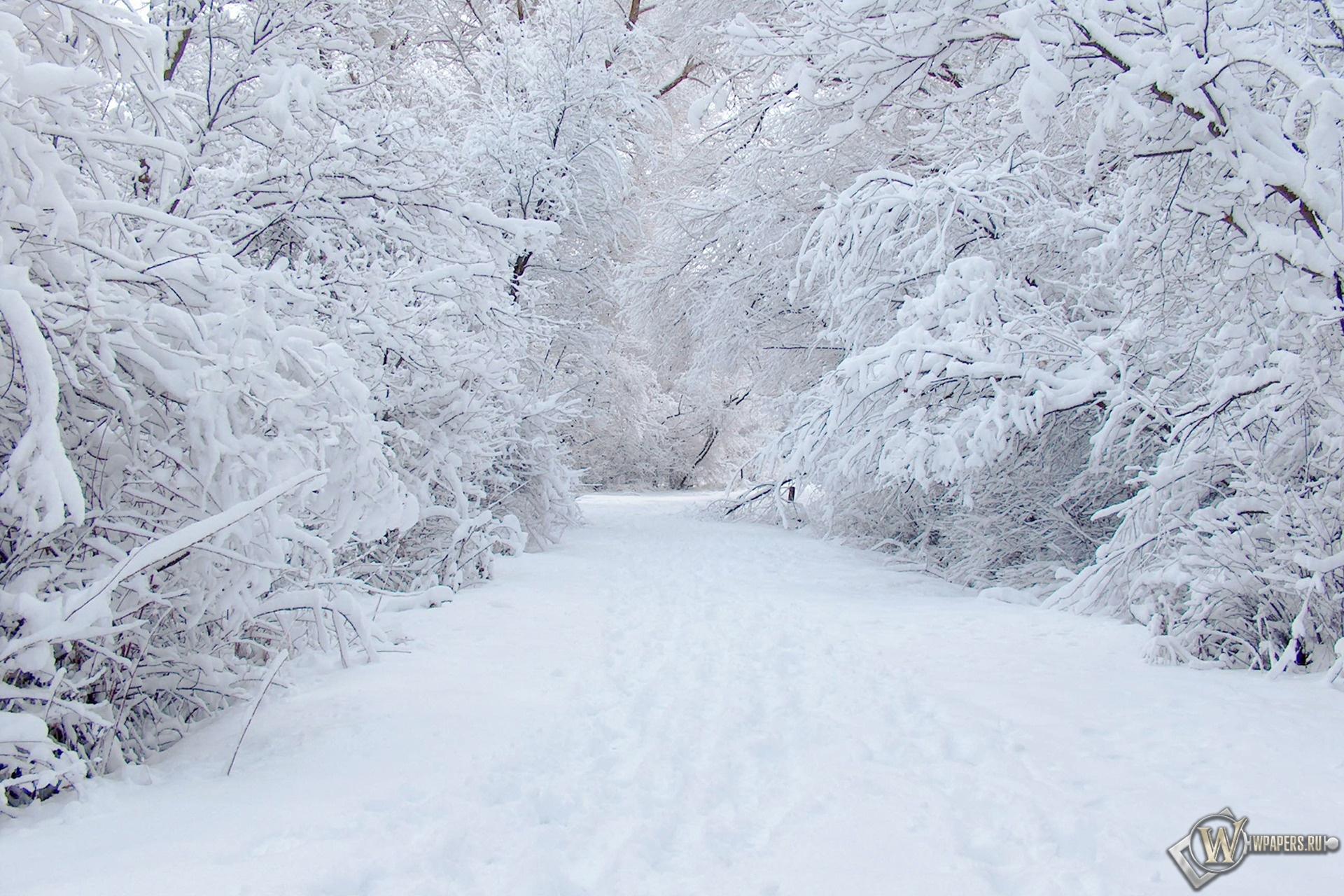 Зима 1920x1280