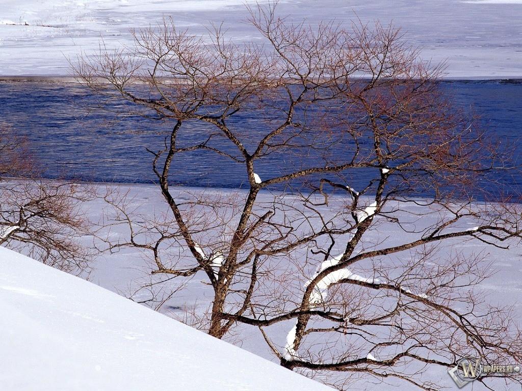 Море на фоне снега 1024x768