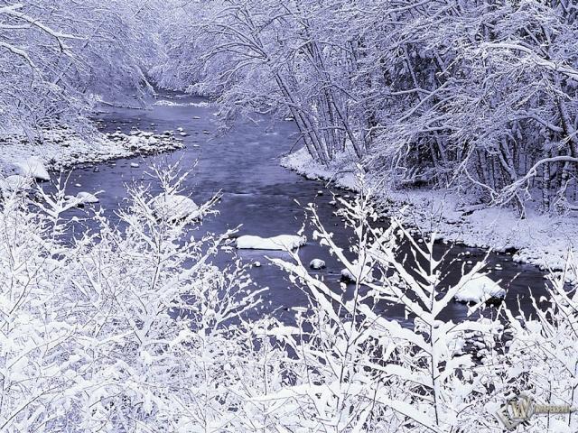 Проток зимней речк и