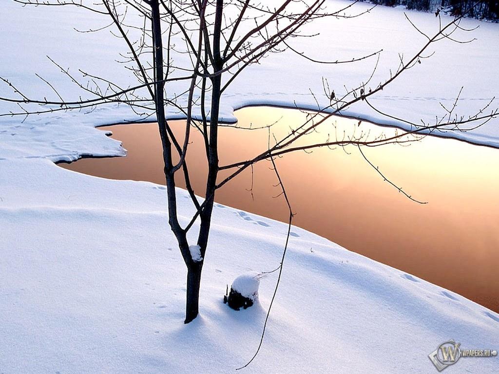 Озеро зимой 1024x768