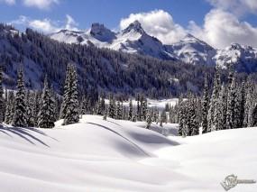 Обои Зимний пейзаж: Зима, Горы, Ели, Зима