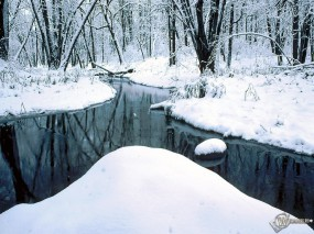Обои Зимний пруд в лесу: Зима, Лес, Деревья, Пруд, Зима