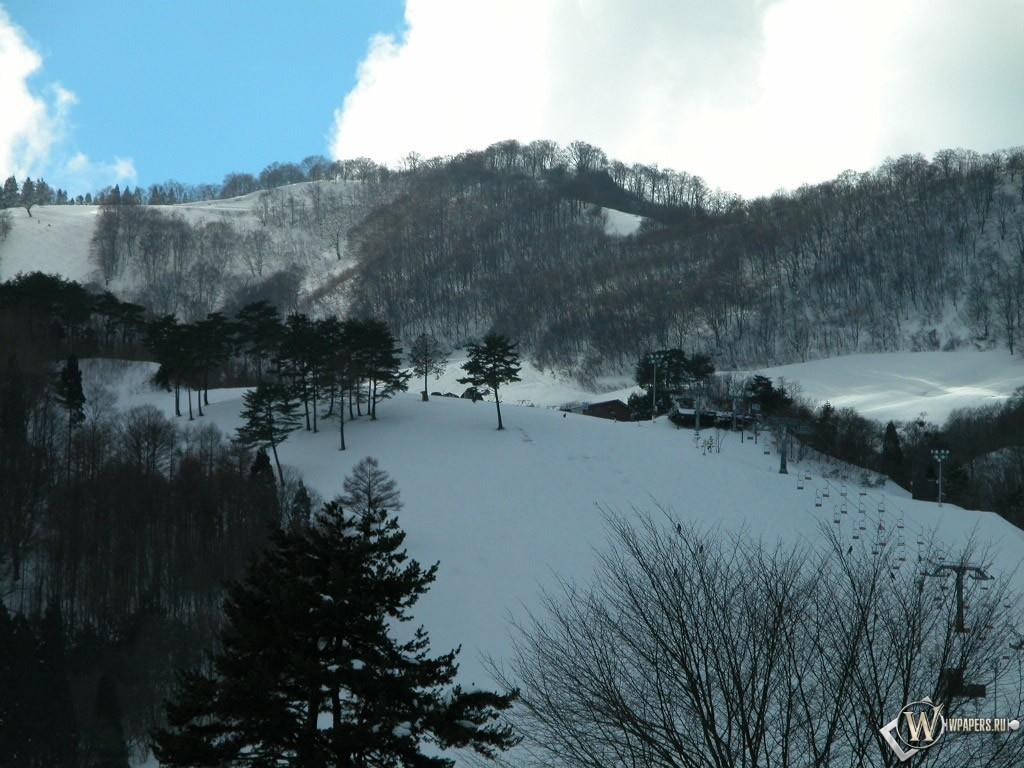 Лесистая местность зимой 1024x768