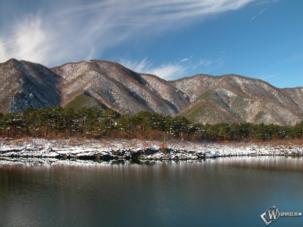 Заснеженный берег реки 1024x768