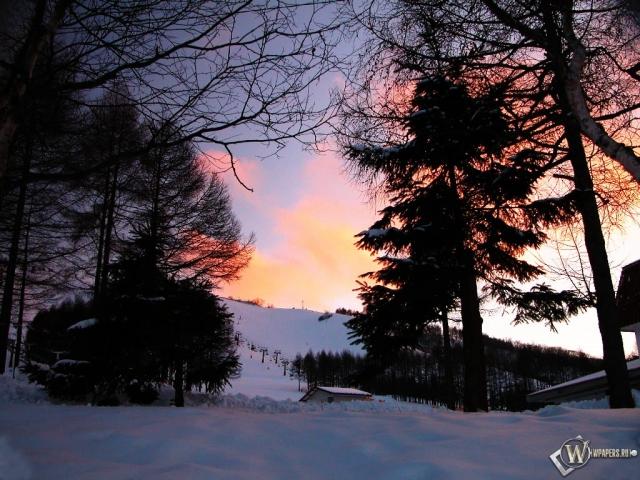 Просвет в зимнем лесу