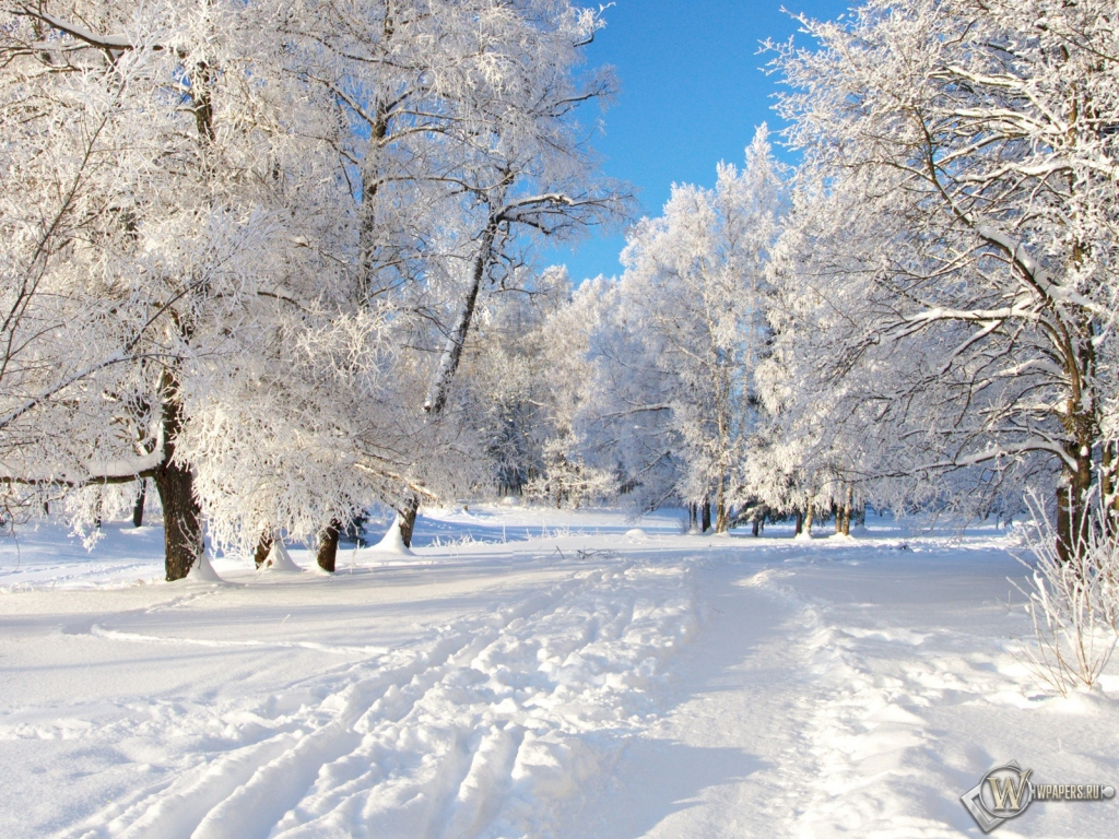 Снежная тропа 1024x768