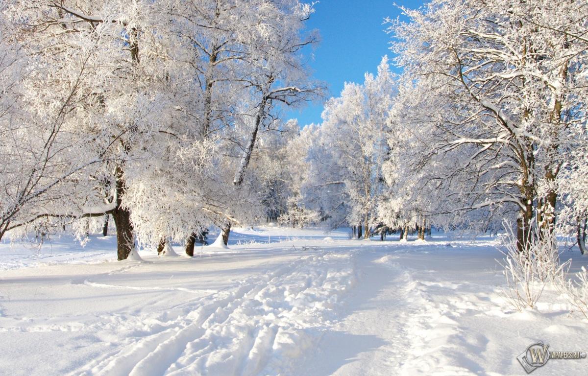 Снежная тропа 1200x768