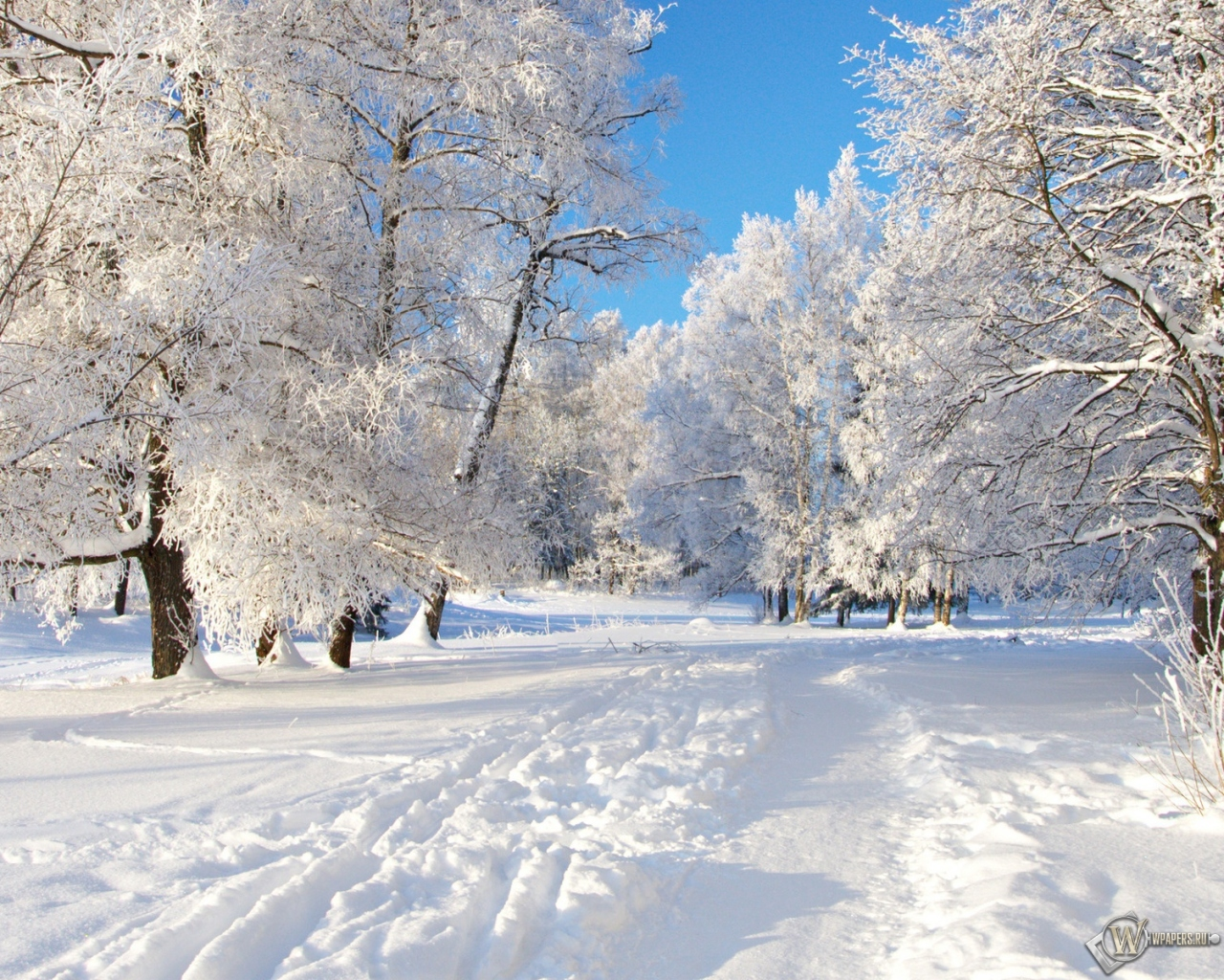 Снежная тропа 1280x1024