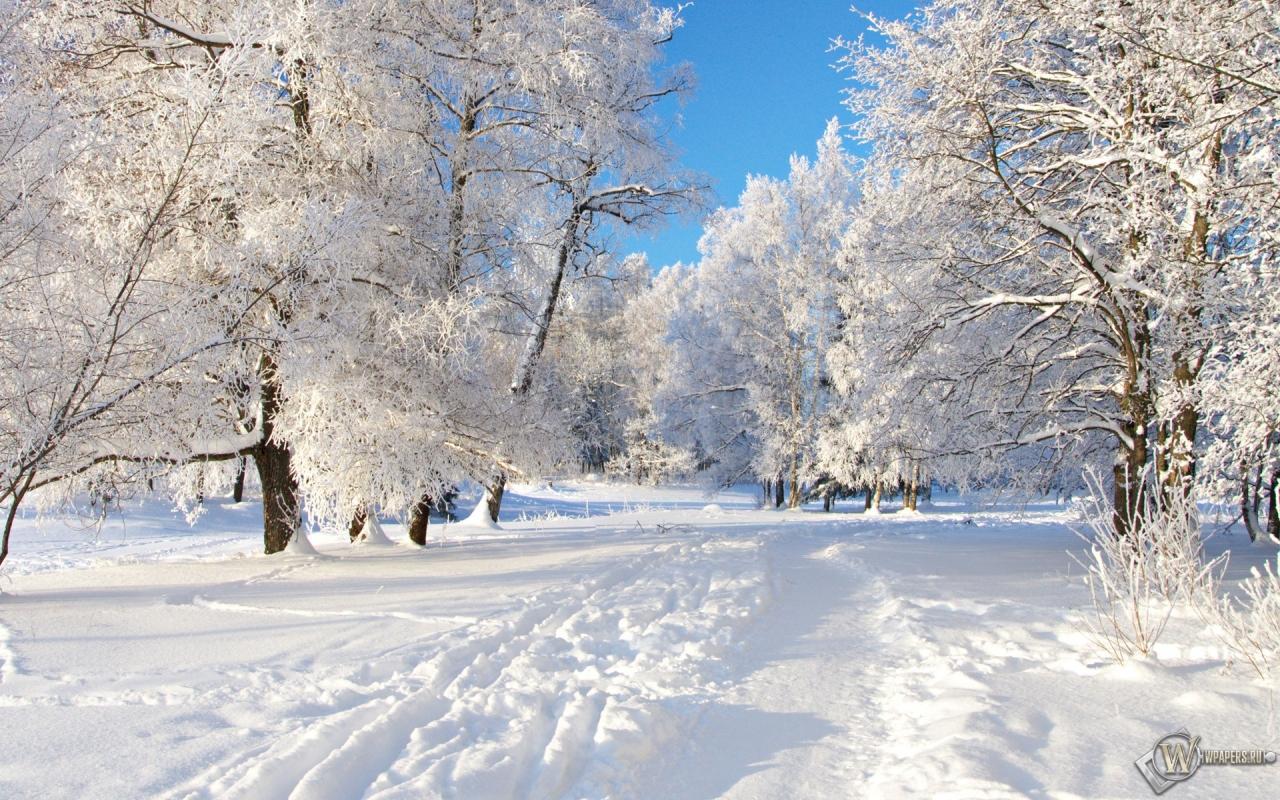 Снежная тропа 1280x800