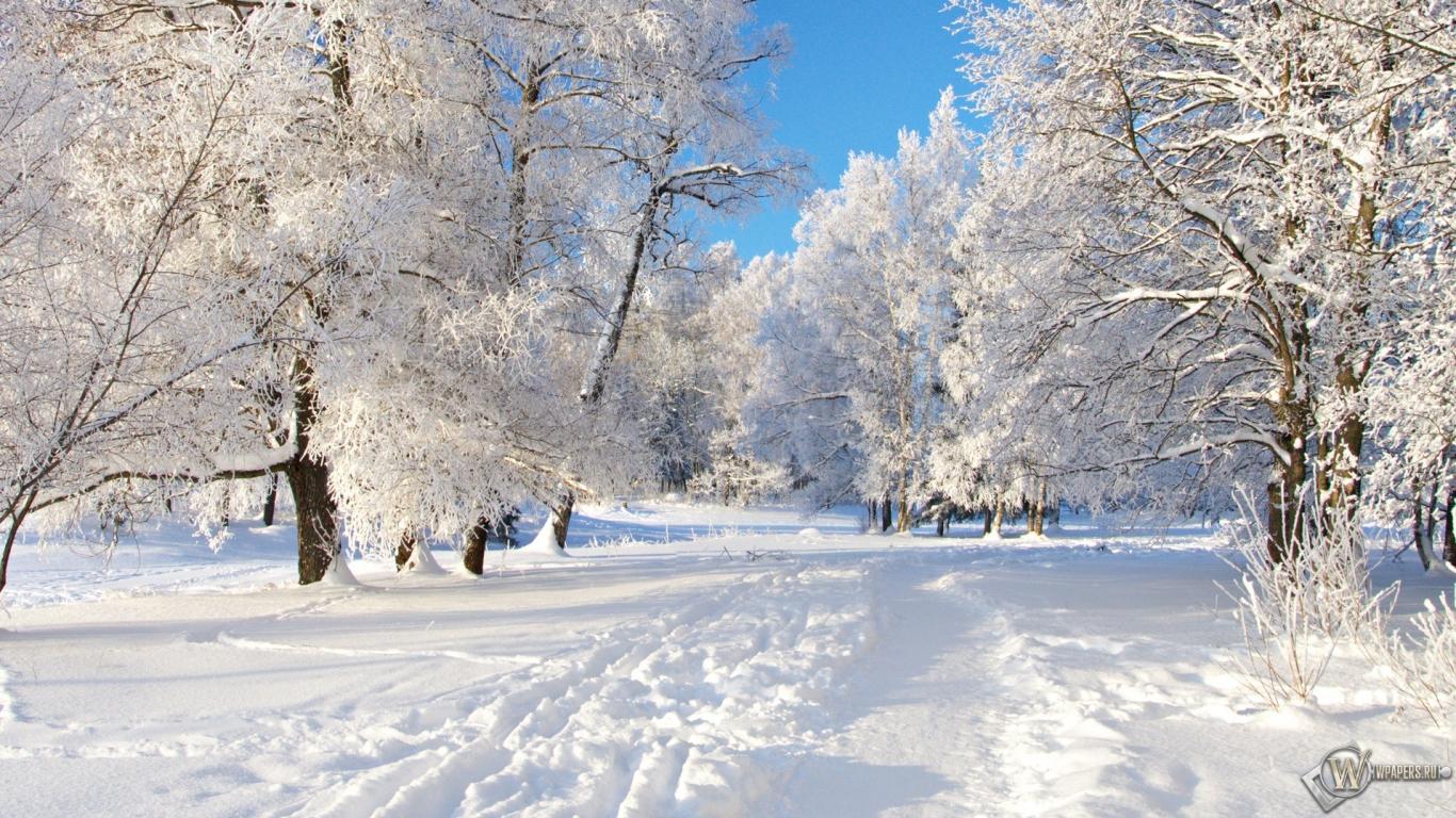 Снежная тропа 1366x768