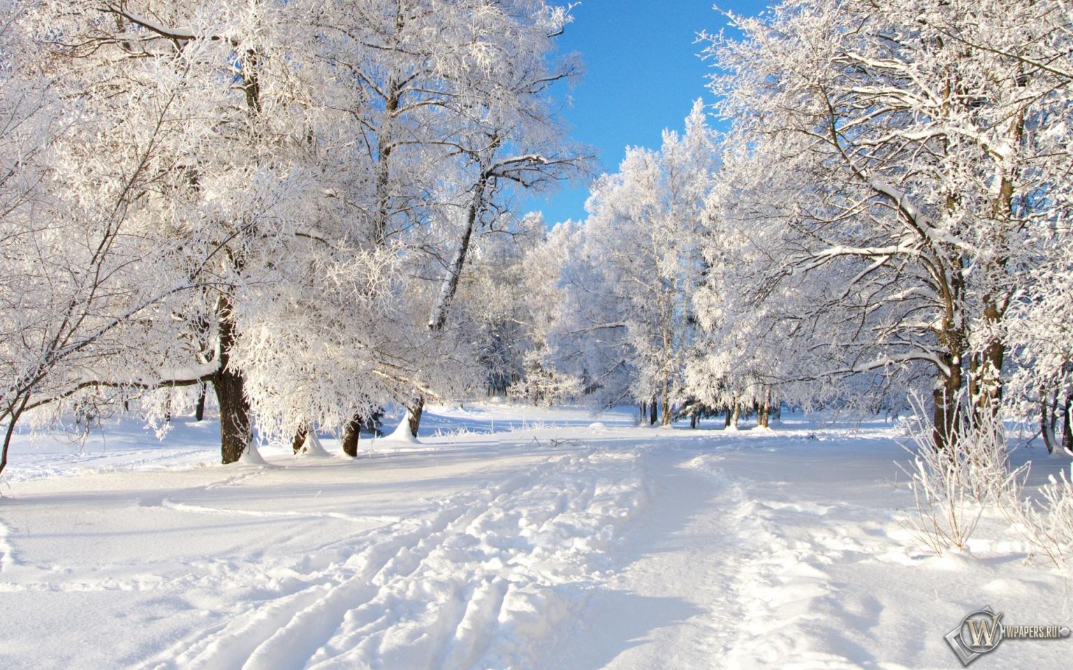 Снежная тропа 1536x960