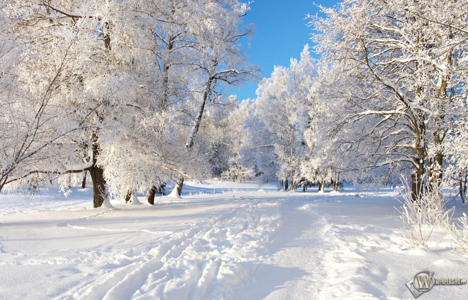 Снежная тропа 1600x1024