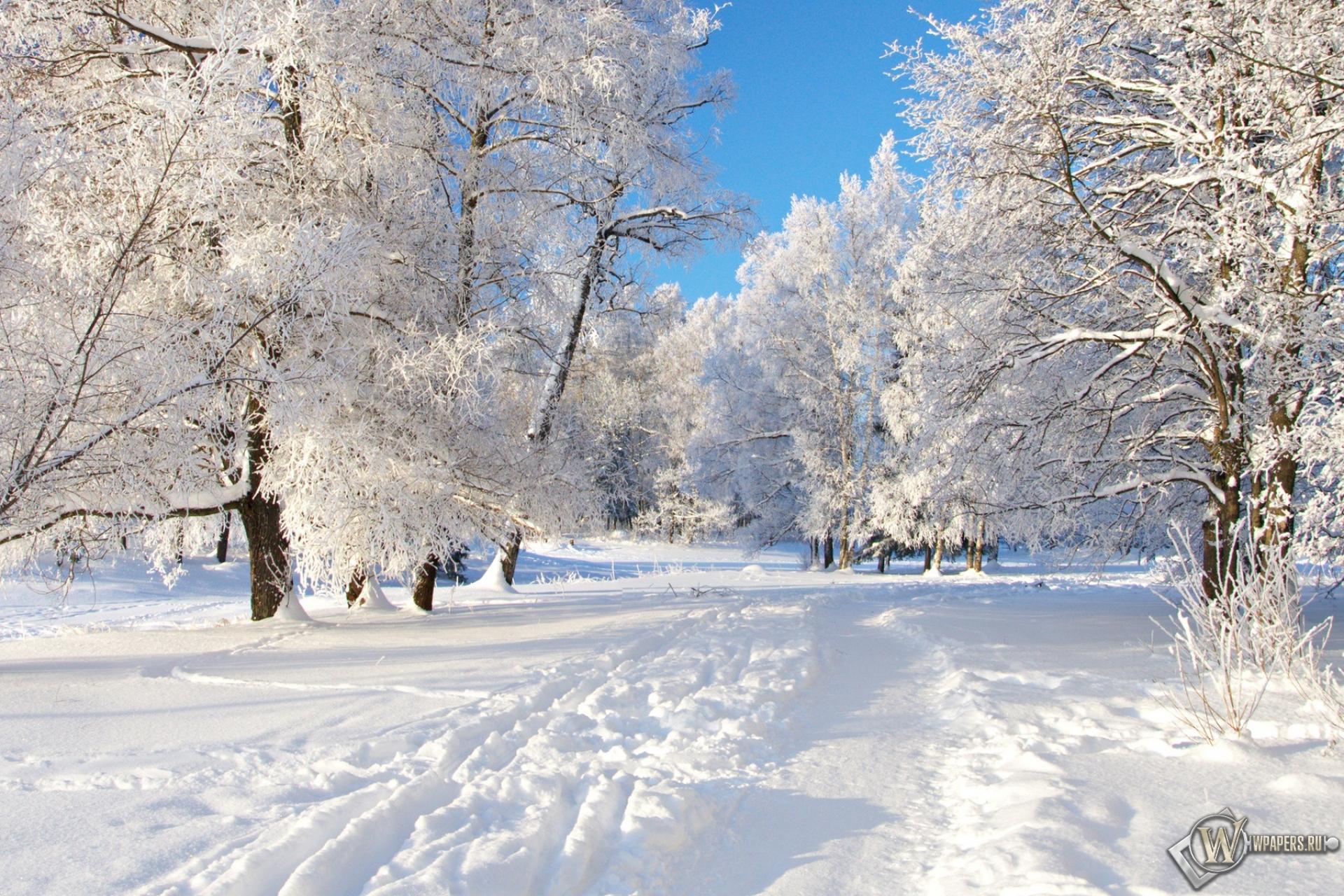 Снежная тропа 1920x1280