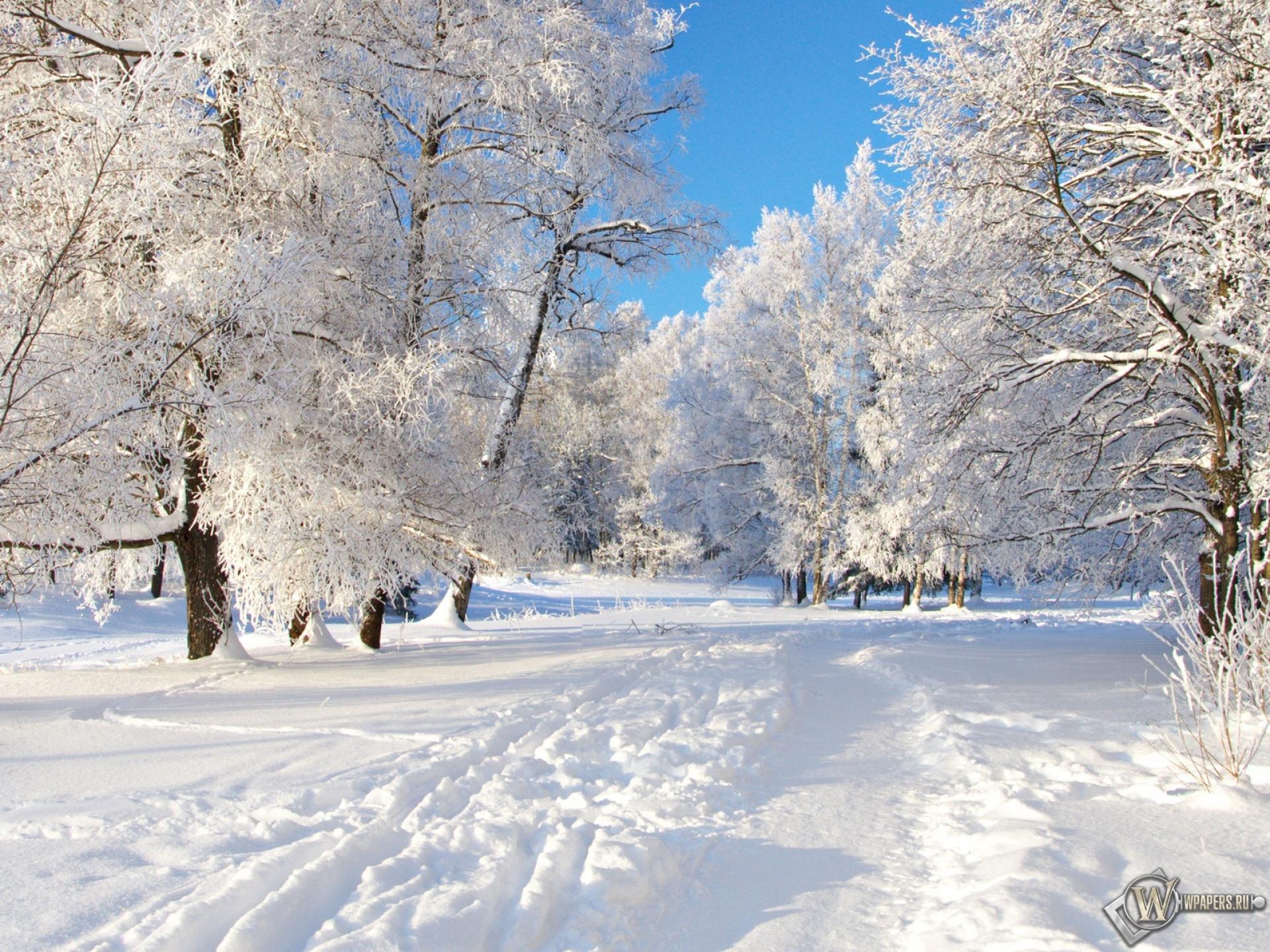 Снежная тропа 1920x1440