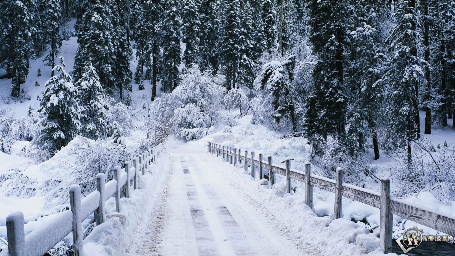 Snowy bridge 1920x1080