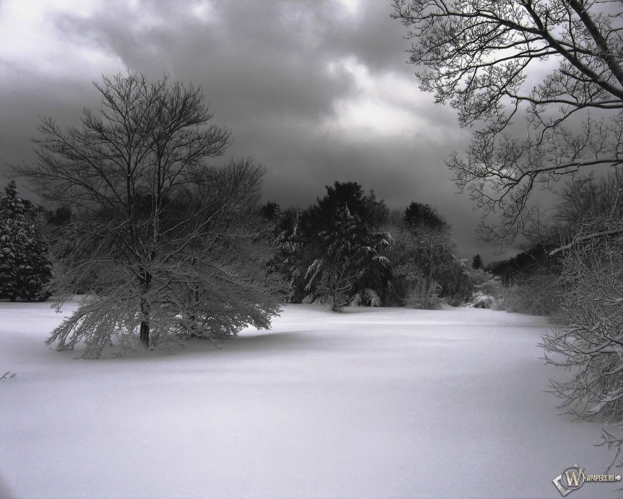 Зимнее фото 1280x1024