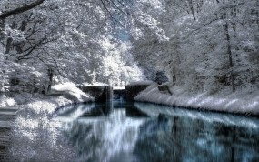 Обои Зимняя речка: Зима, Вода, Снег, Деревья, Тропа, Ветки, Зима