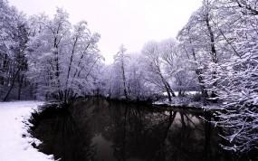 Обои Тёмное озеро зимой: Зима, Снег, Деревья, Озеро, Небо, Ветки, Зима