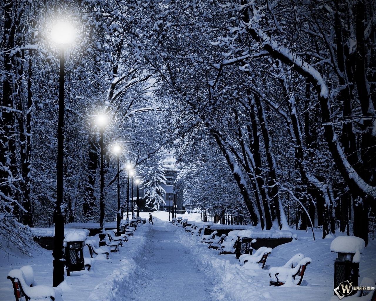 Аллея зимой 1280x1024