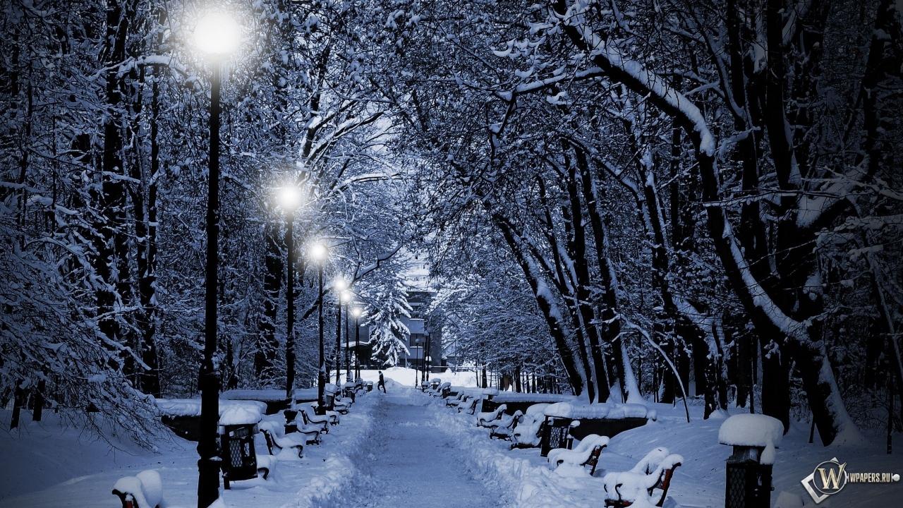 Аллея зимой 1280x720