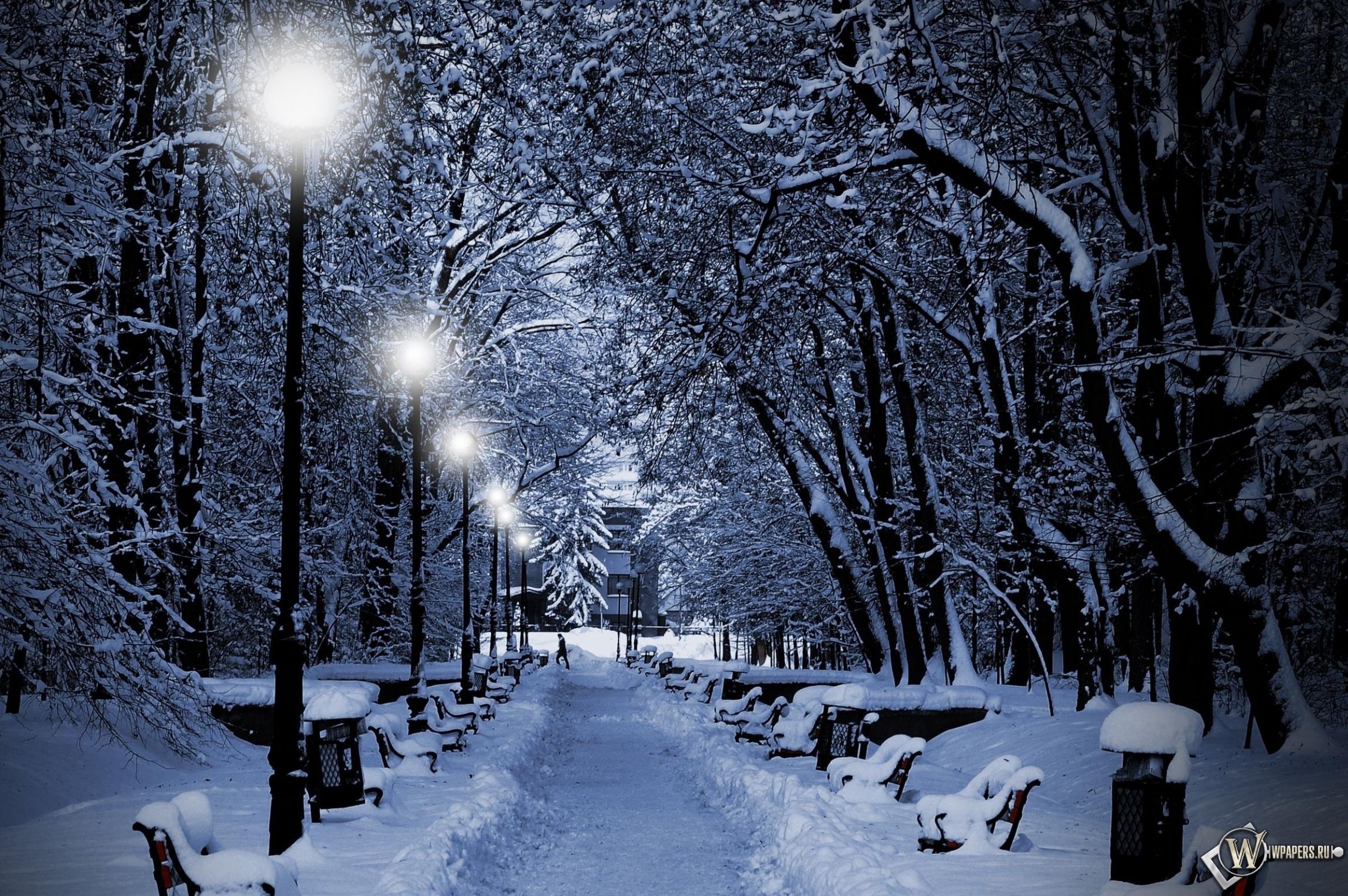 Аллея зимой 2300x1530