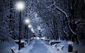 Обои Аллея зимой: Фонари, Зима, Снег, Деревья, Аллея, Ветки, Зима