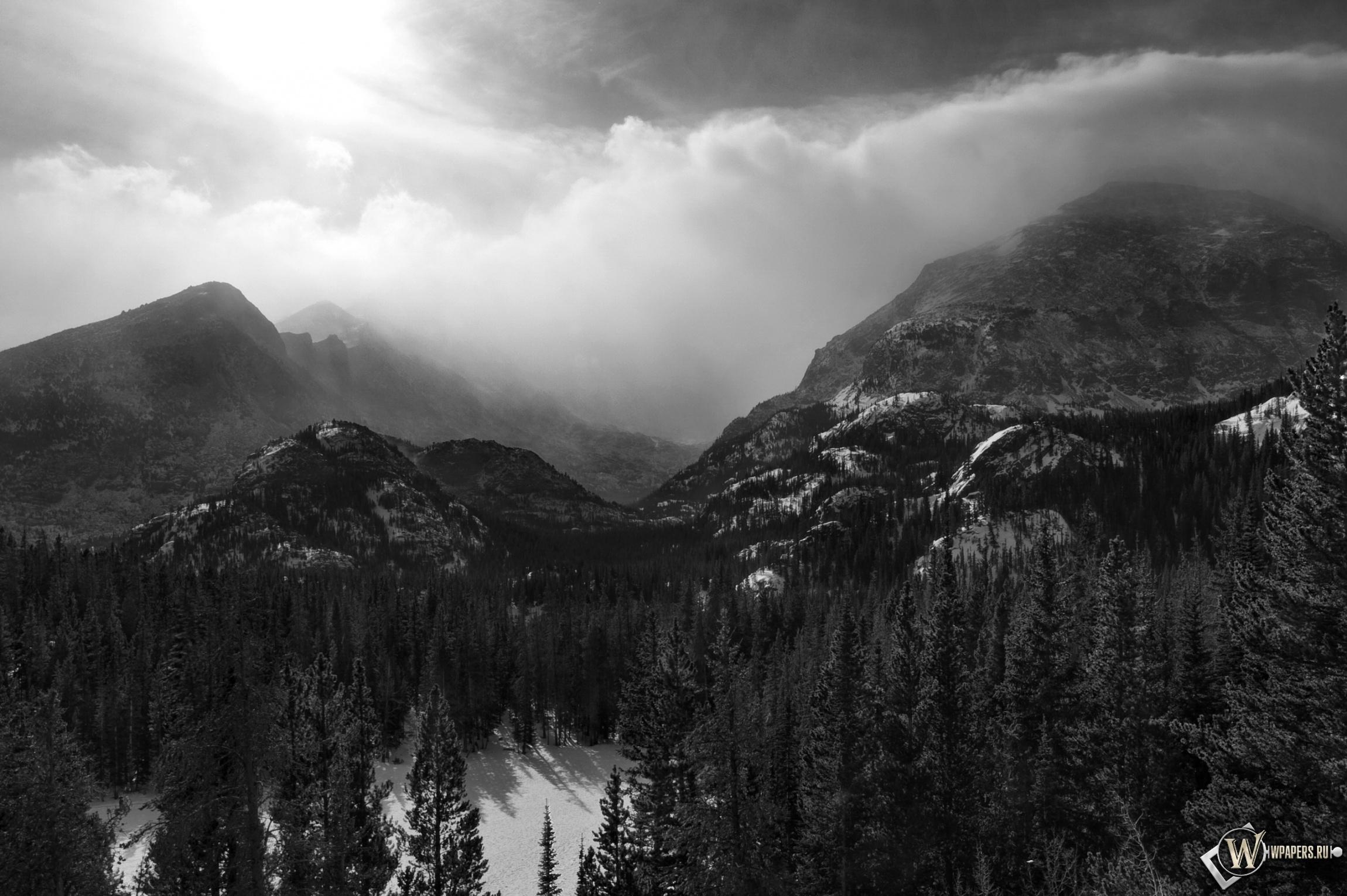 Зимний лес на горах 2300x1530