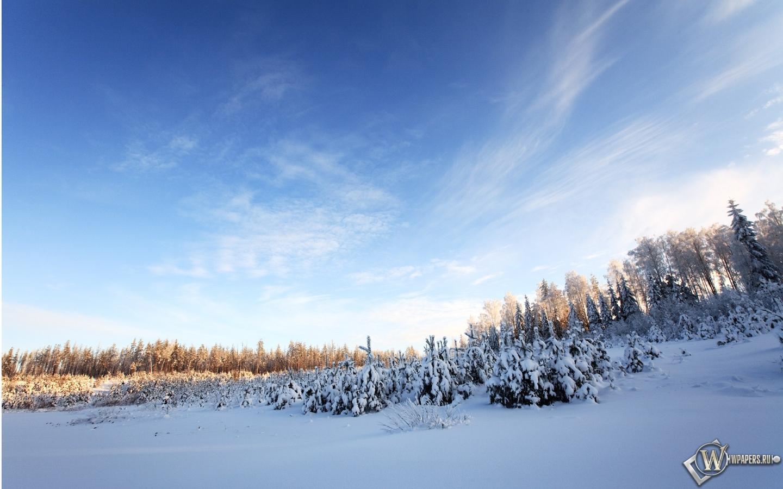 Фото для зимние сапоги кхан многом именно