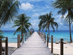 Обои Полинезия  туамоту: Пальмы, Пляж, Пристань, Полинезия, Вода и небо