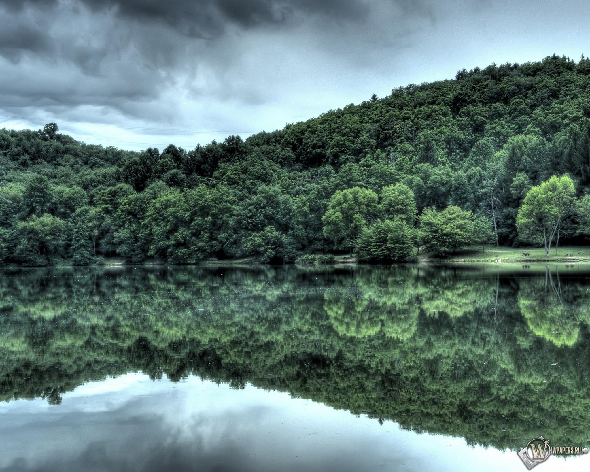Лес у озера 2048x1638