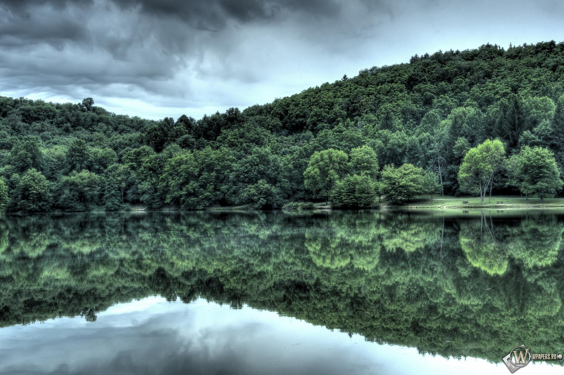 Лес у озера 2300x1530