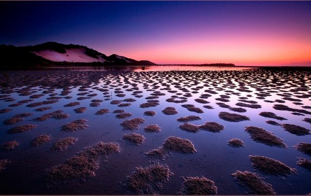 Сиреневое море