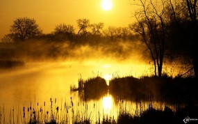 Обои Туман над болотом: , Вода и небо