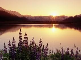 Обои Восход над озером: , Вода и небо