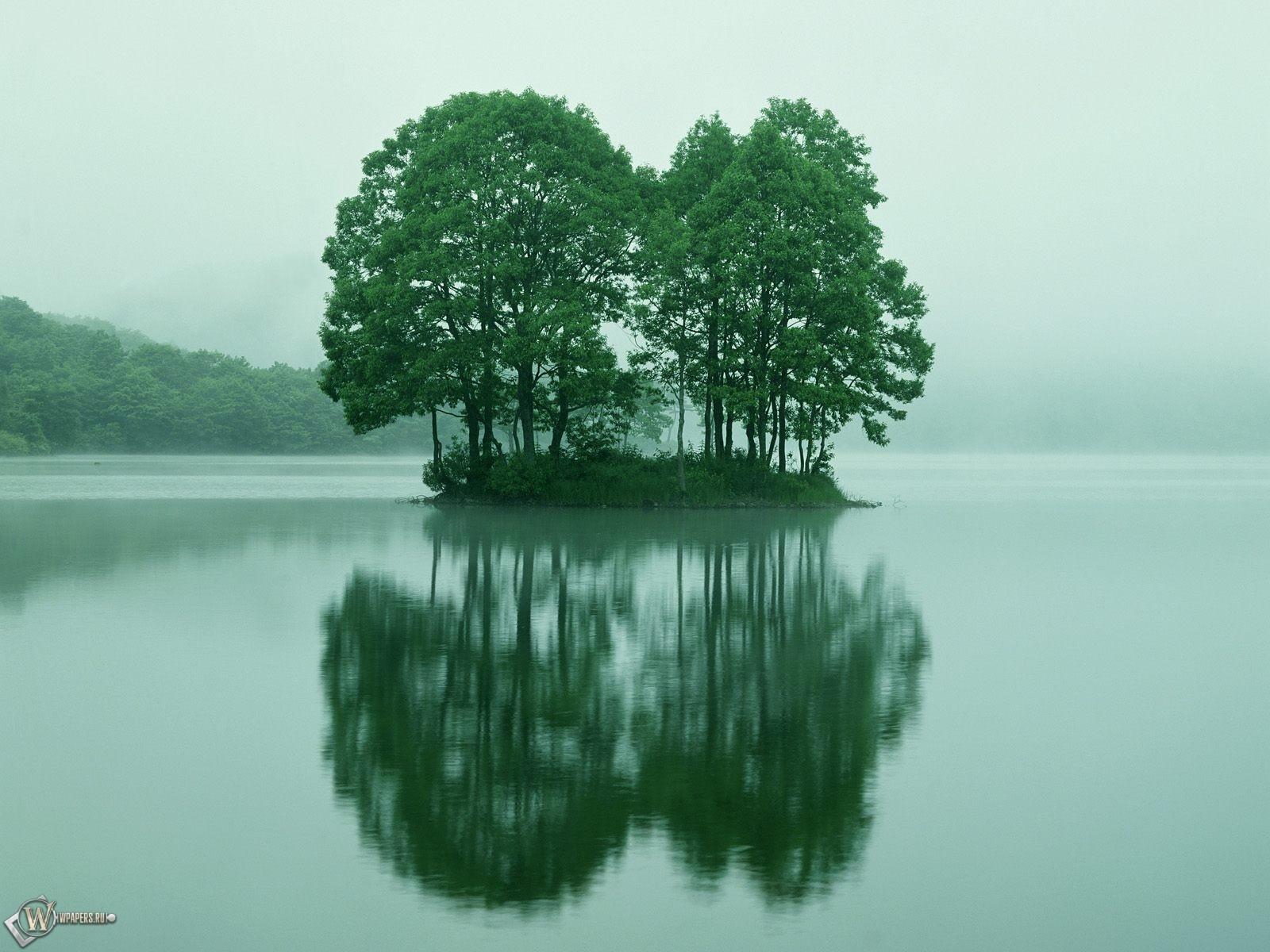 Зеленый островок 1600x1200