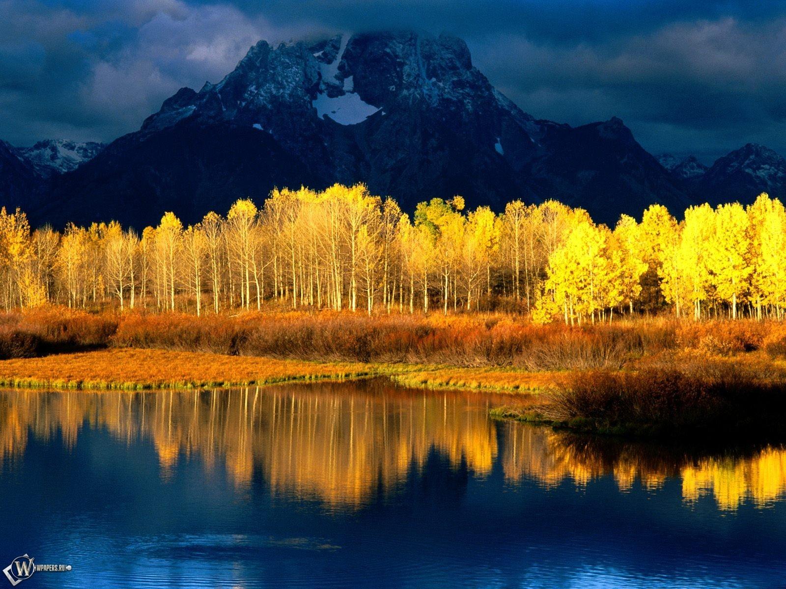 Осенние деревья в воде 1600x1200