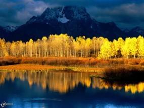 Обои Осенние деревья в воде: , Вода и небо